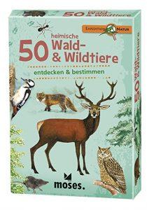 Kartenset Wald- & Wildtiere