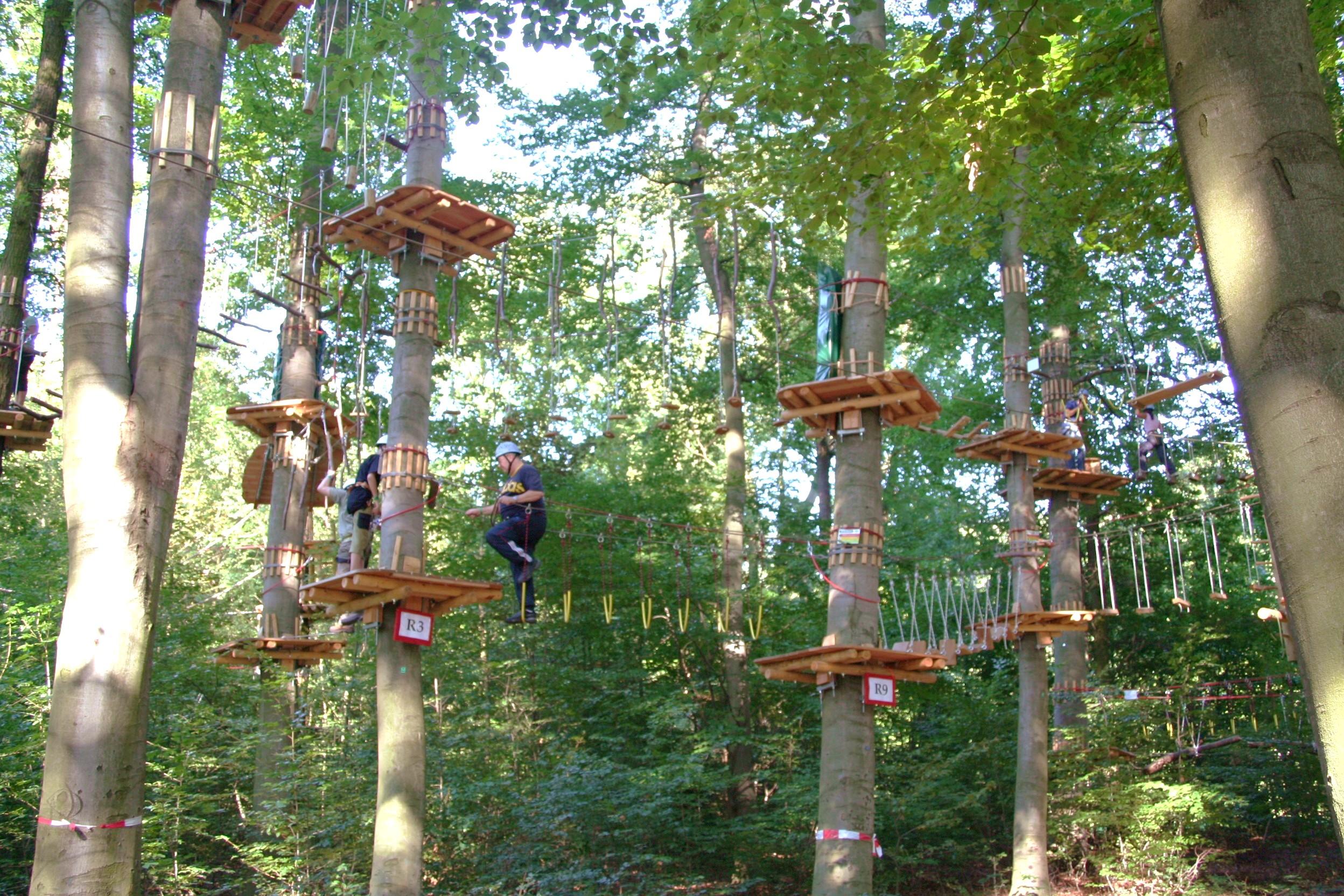 Im Kletterwald kommen Wald- und Sportfans voll auf Ihre Kosten. Foto: kaemte/pixelio.de