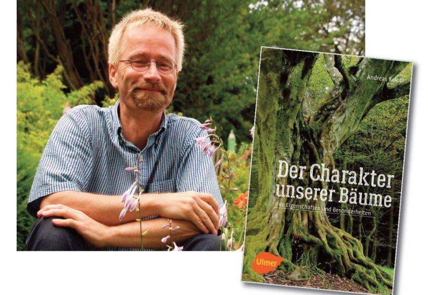 Baum im Buch: Die besten Lesetipps für Baumfreunde!