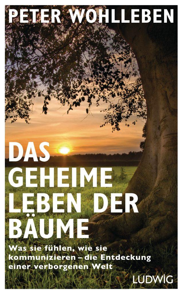 Das geheime Leben der Bäume. Foto: Ludwig-Verlag