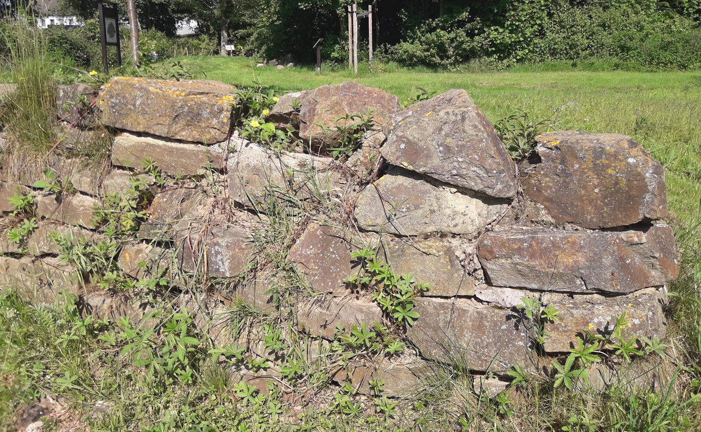 Insekten lieben Trockenmauern. Foto: Kristin Steffan/ForestFinance