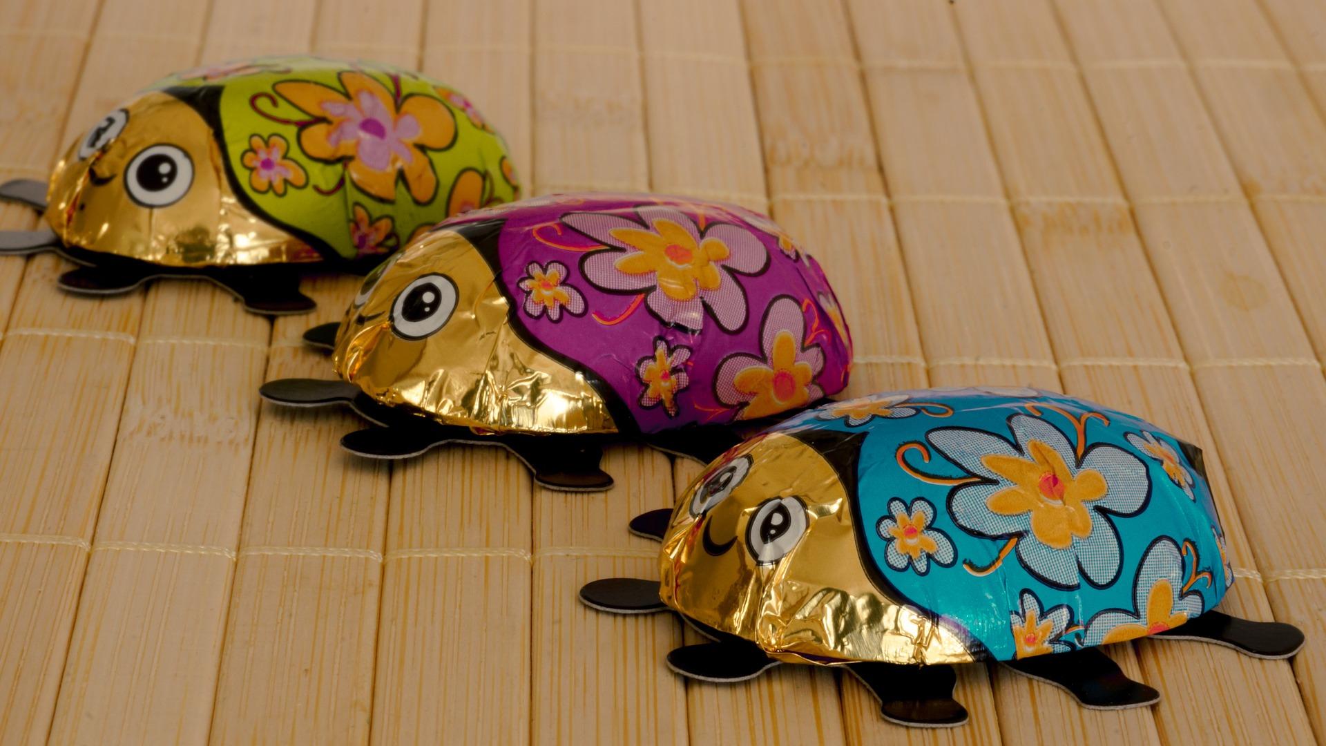Schokoladenmarienkäfer