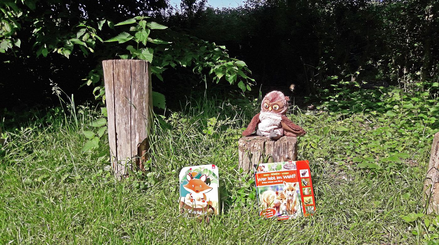 """""""Schau mal da! Im Wald"""" und """"Wer lebt im Wald?"""" Foto: Kristin Steffan/ForestFinance"""