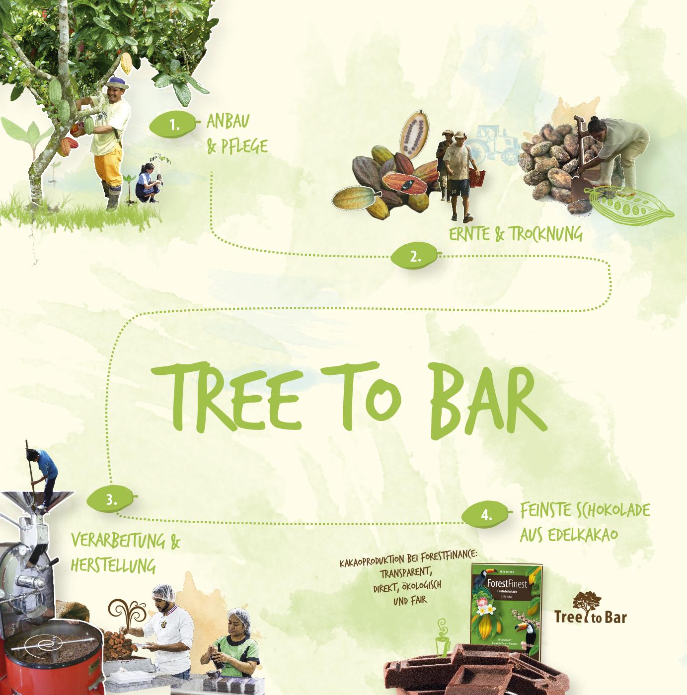 Alles aus einer Hand: vom Kakaobaum bis zur Schokolade. Bild: ForestFinance
