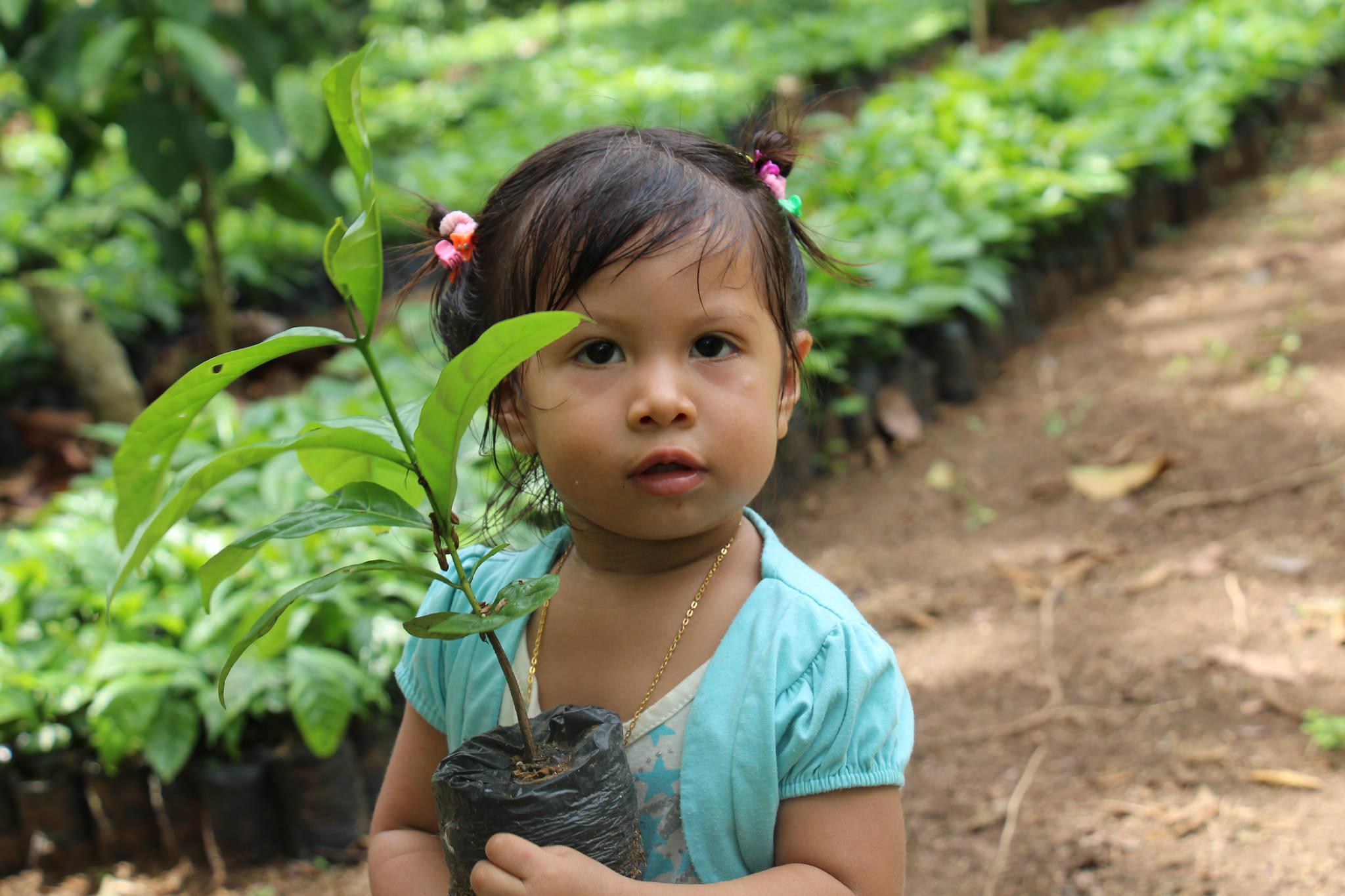 Wir halten die Zukunft in unseren Händen: nachhaltige Aufforstung trägt zum Klimaschutz bei. Foto: ForestFinance
