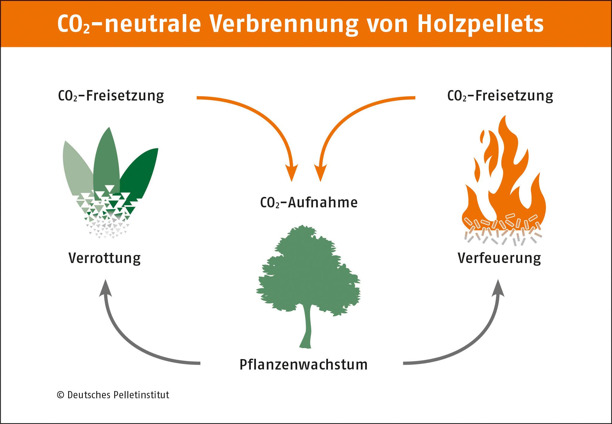 Das Heizen mit Pellets kann komplett klimaneutral sein. Grafik: Deutsches Pelletinstitut