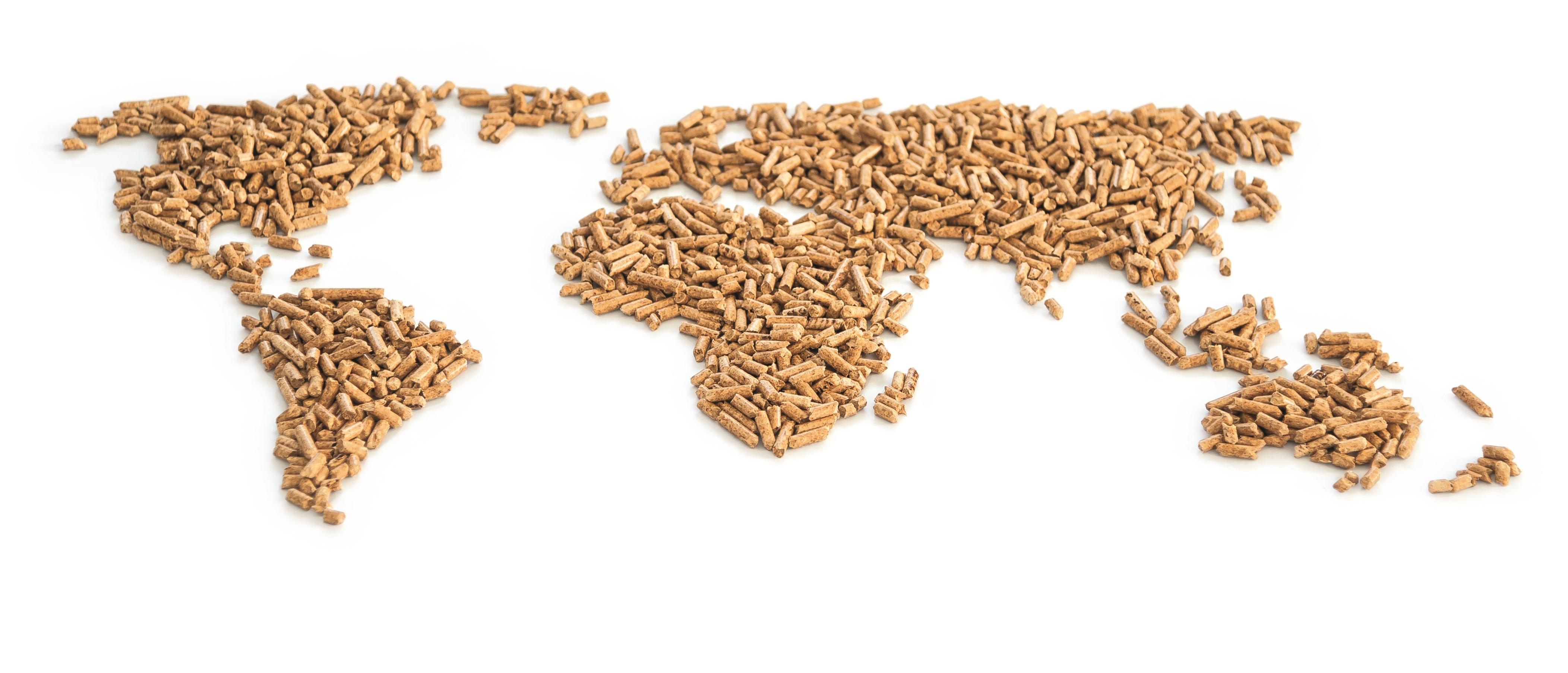 Die Pelletproduktion weltweit steigt rasant: Foto: Deutsches Pelletinstitut