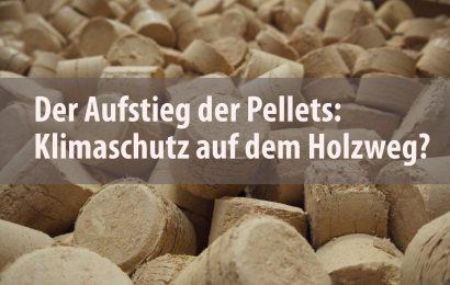 Der Aufstieg der Pellets: Klimaschutz auf dem Holzweg?