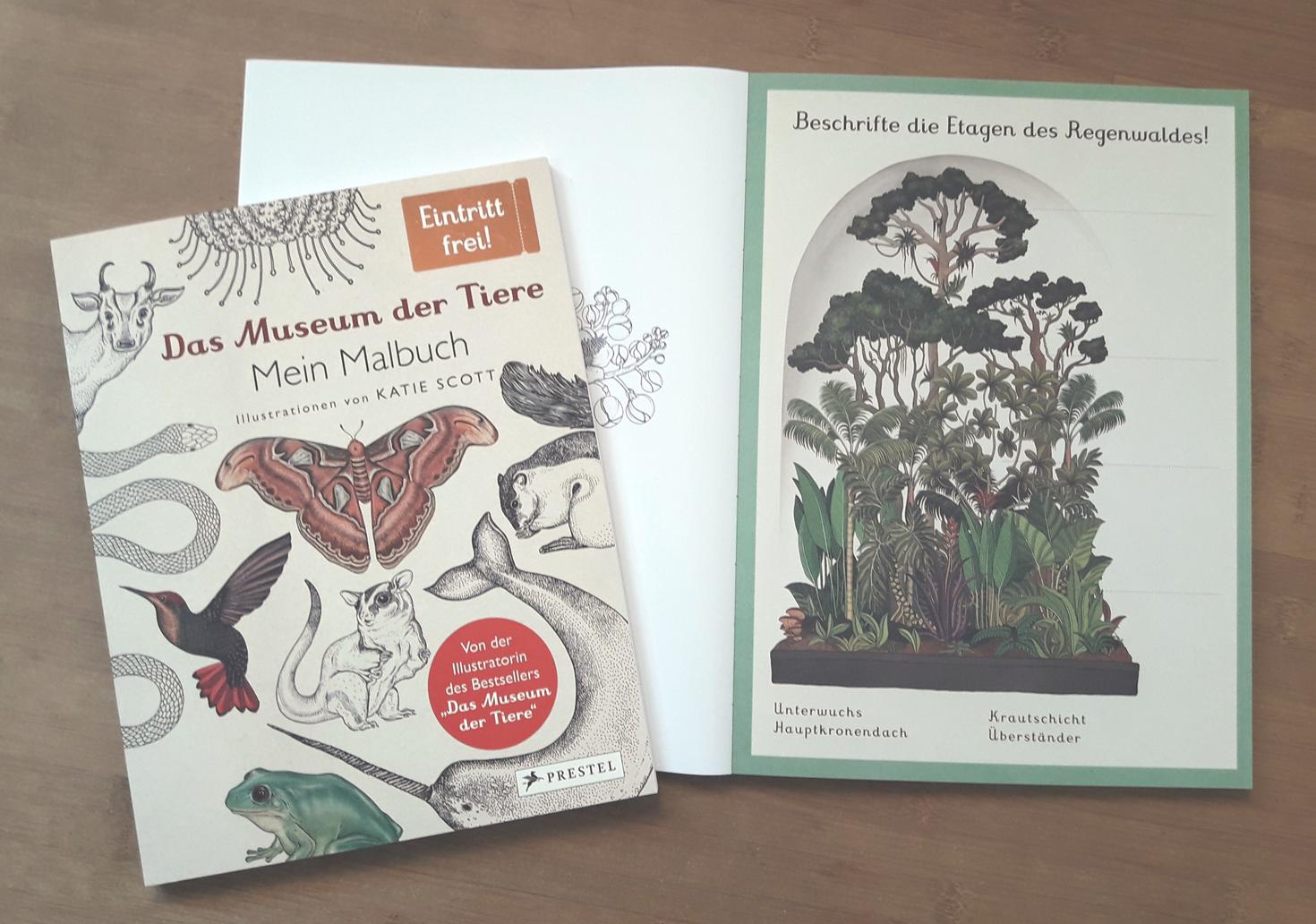 """""""Das Museum der Tiere""""-Malbuch und """"Das Museum der Pflanzen""""-Mitmachbuch. Foto: ForestFinance/Kristin Steffan"""