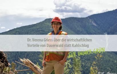 Für immer grün: Dr. Verena Griess über die wirtschaftlichen Vorteile von Dauerwald statt Kahlschlag