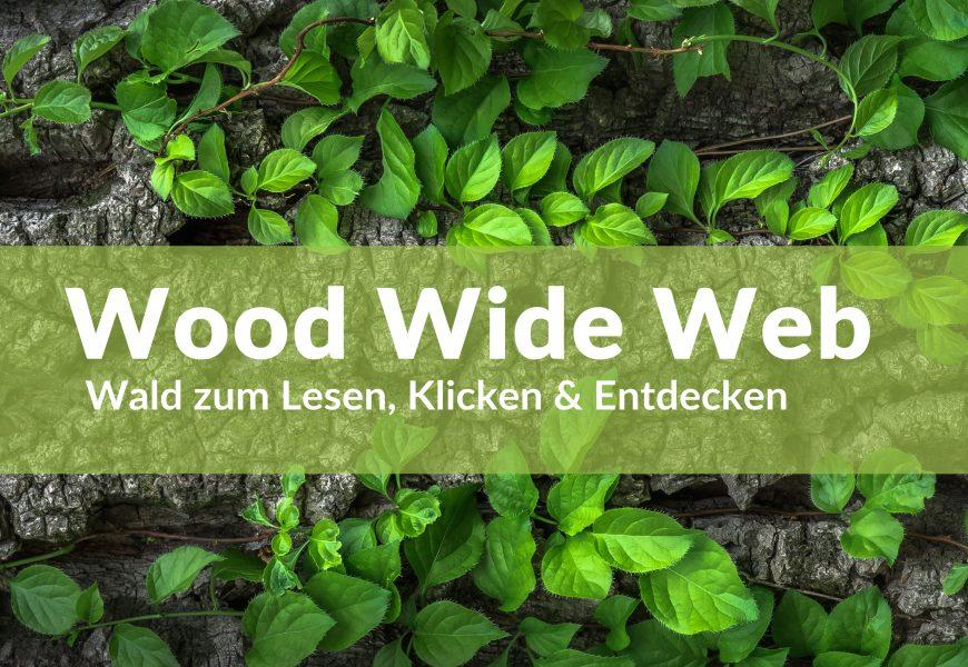 Wood Wide Web – Wald zum Lesen, Klicken & Entdecken