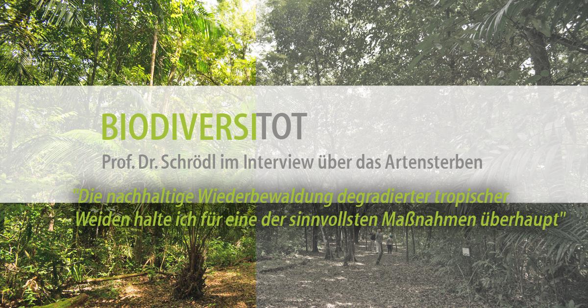 Biodiversitot – ForestFinance-Kunde Prof. Dr. Michael Schrödl im Interview über das Artensterben. Foto: ForestFinance
