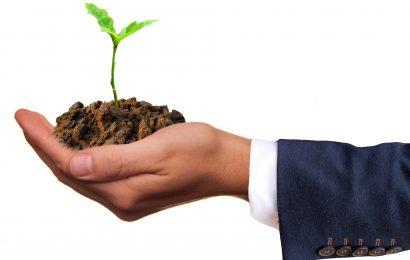 Green Investments – diese vier Dinge werden 2018 wichtig