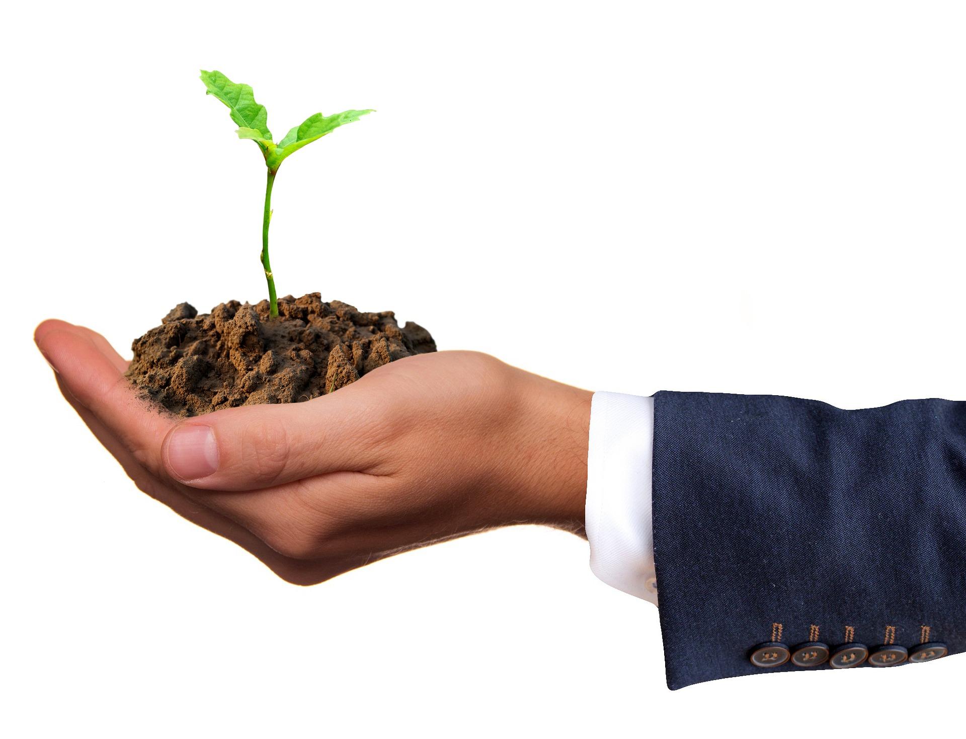 2018 wird ein ereignisreiches Jahr im grünen Finanzsektor Foto: Pixabay