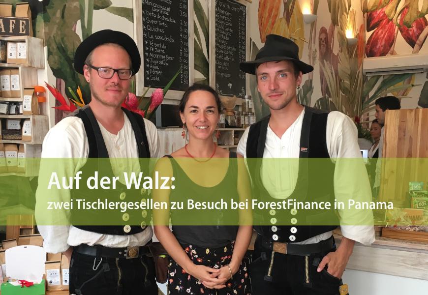 Auf der Walz: zwei Tischlergesellen zu Besuch bei ForestFinance in Panama