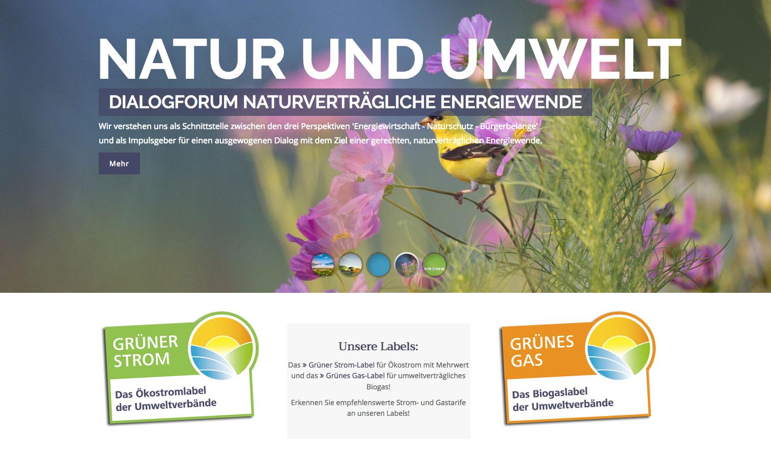 Das Grüne Strom Label ist das Siegel, das die großen Umwelterbände entwickelt haben. Es garantiert, dass der gekaufte Ökostrom tatsächlich aus erneuerbaren Energien stammt. Foto: Screenshot www.gruenerstromlabel.de