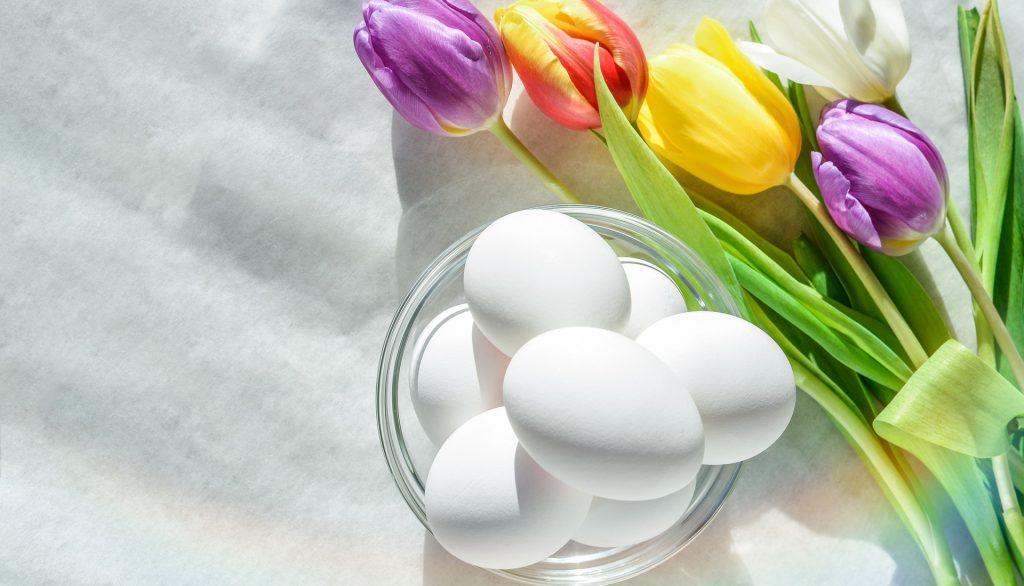Der Frühling ist da! Zeit für nachhaltige Ostern.