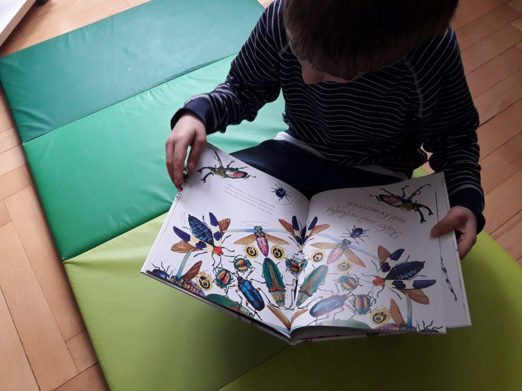 Einfach fabelhaft: In diesem farbenprächtigem Buch könnten wir stundenlang blättern. Foto: Kristin Steffan