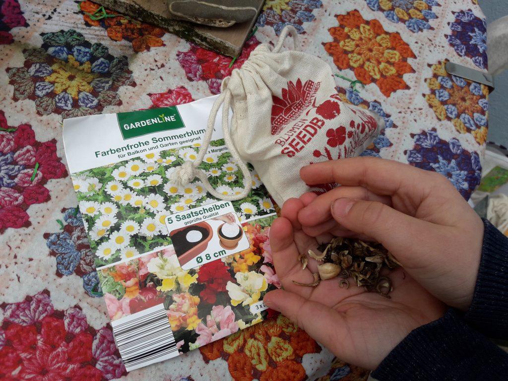 Bienen und Hummeln lieben einheimische Blumen. Die Samen können auch selbst gesammelt werden! Foto: Kristin Steffan