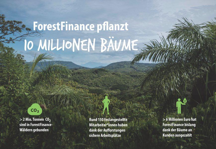 ForestFinance überschreitet 10-Millionen-Baumgrenze