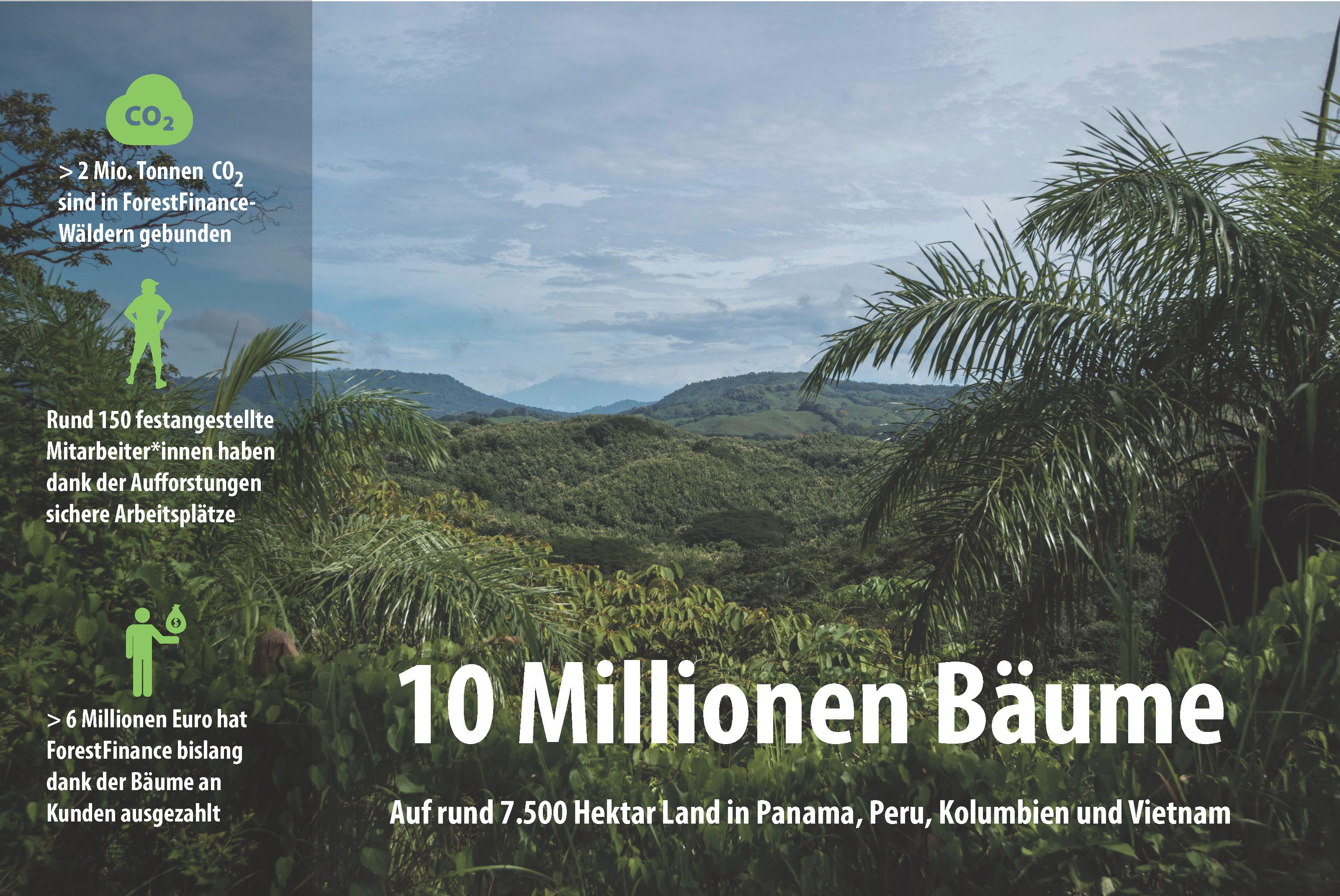 Bedeutung der zehn Millionen ForestFinance-Bäume