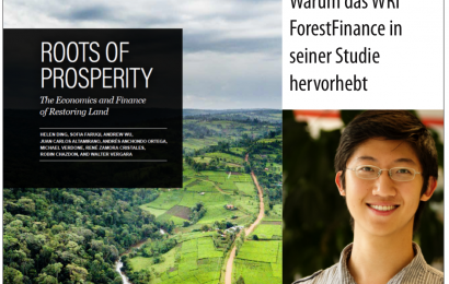 World Resources Institute von ForestFinance-Konzept überzeugt