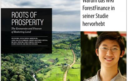World Resources Institute von ForestFinance-Konzept überzeugt