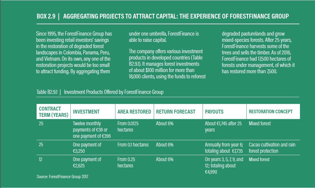 Der WRI-Report stellt auf Seite 30 ForestFinance als gelungenes Beispiel für Renaturierungsprojekte vor. Foto: Screenshot