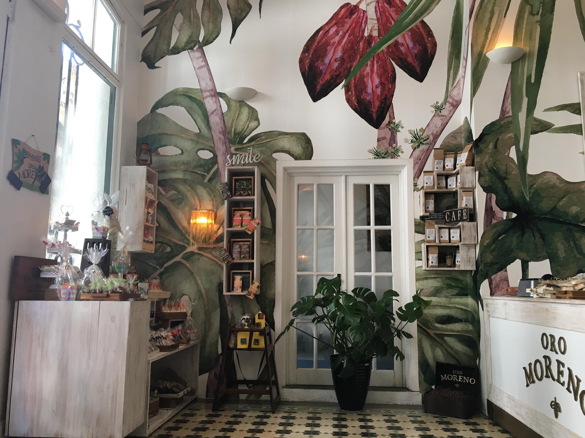 Unser Tropical Chocolate Café Panamá befindet sich im Herzen der Altstadt von Panama City.