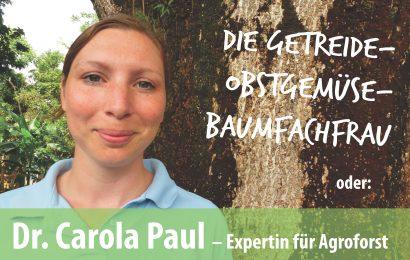 Warum Agroforstwirtschaft Mensch und Umwelt gut tut
