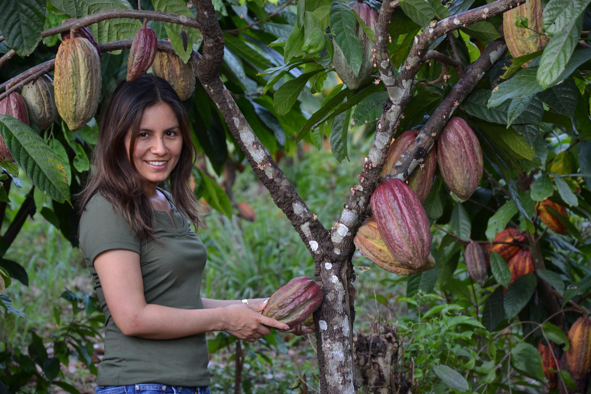 Marisol Najarro weiß, worauf es bei der Kakaopflege ankommt. Foto: ForestFinance