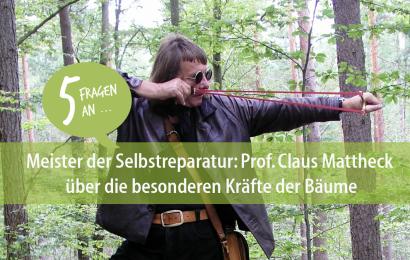 Meister der Selbstreparatur: Prof. Claus Mattheck über die besonderen Kräfte der Bäume