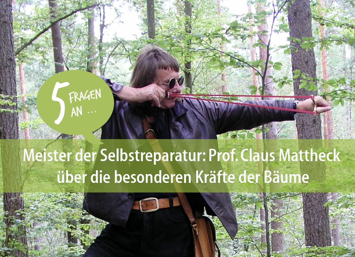 Prof. Claus Mattheck hat einen scharfen Blick, wenn es um die Standfestigkeit von Bäumen geht. Foto: privat