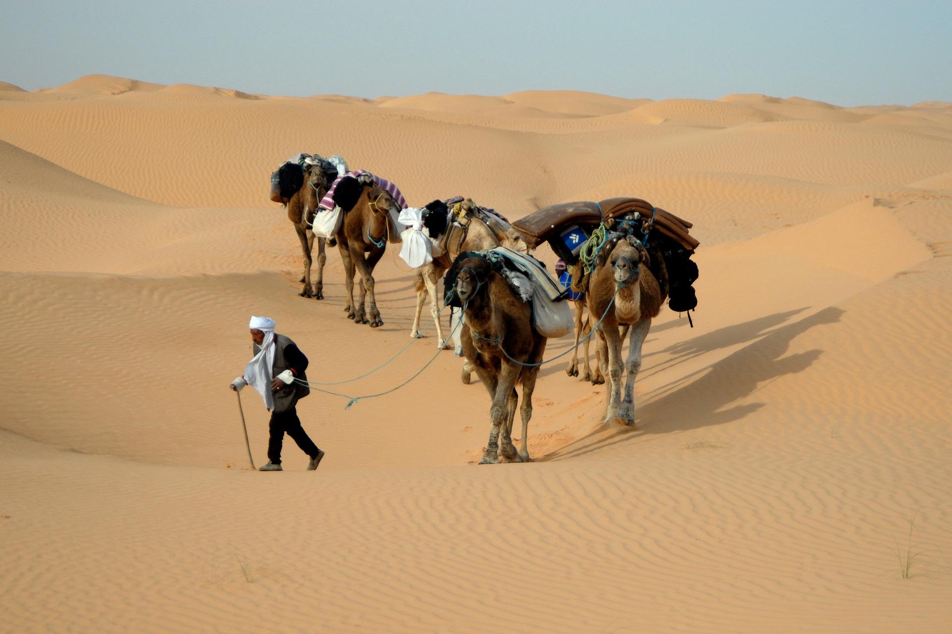 Eine kleine Karawane in Tunesien.