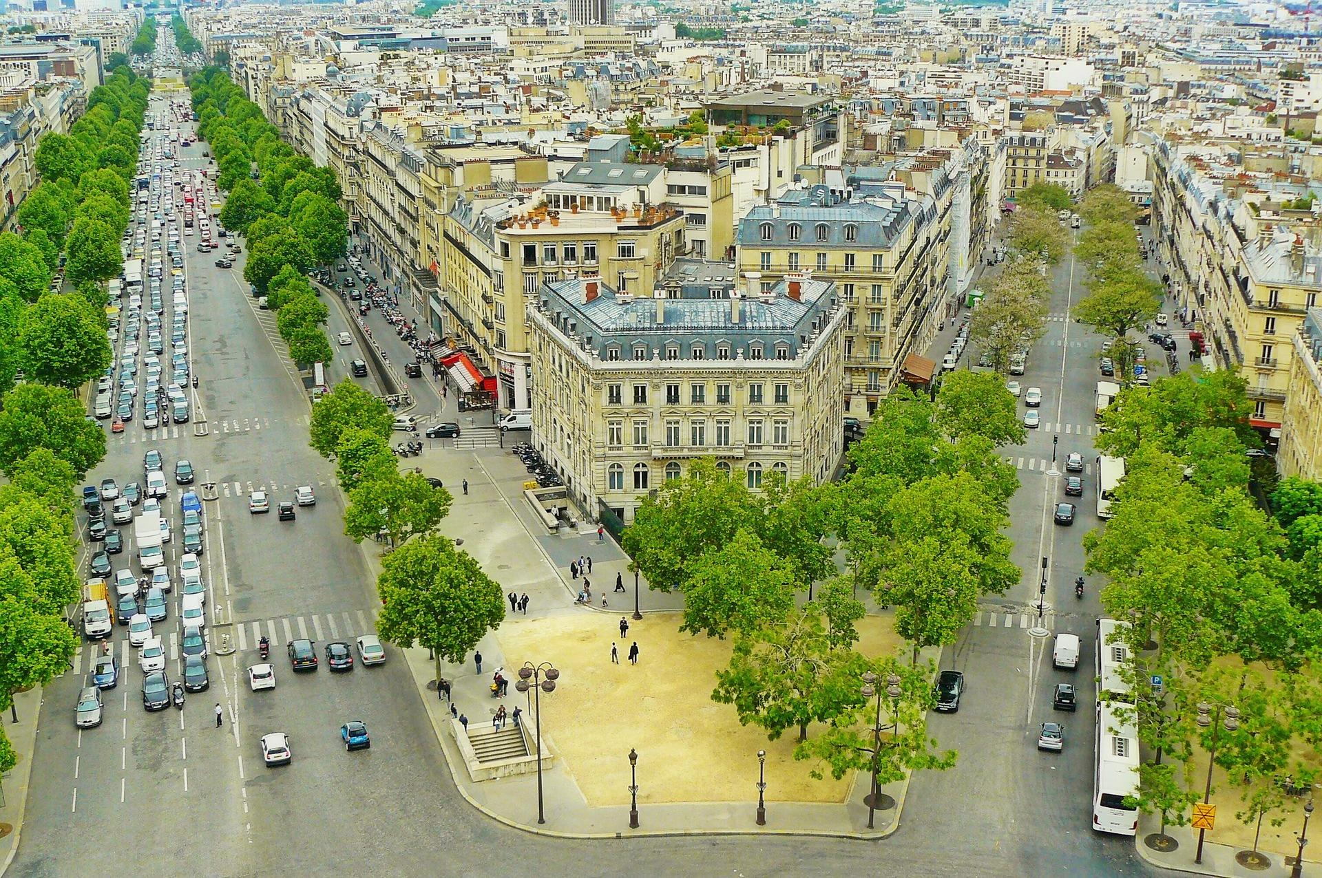 Paris, Allee, Bäume