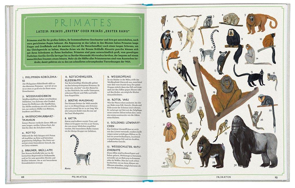 """Einblick in das Buch """"Die Tiere unserer Erde"""". Foto: .moses Verlag"""