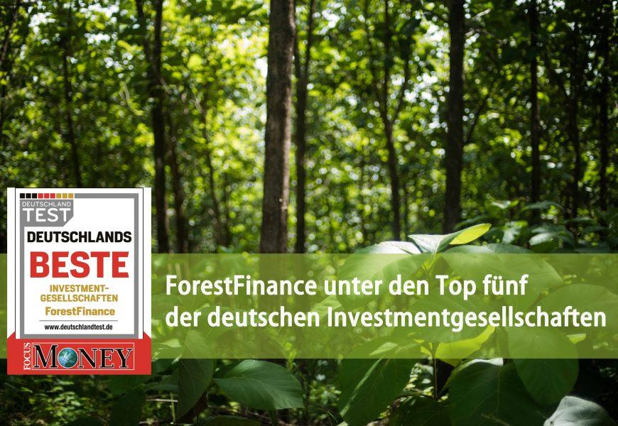 Focus Money: ForestFinance unter den Top fünf der deutschen Investmentgesellschaften