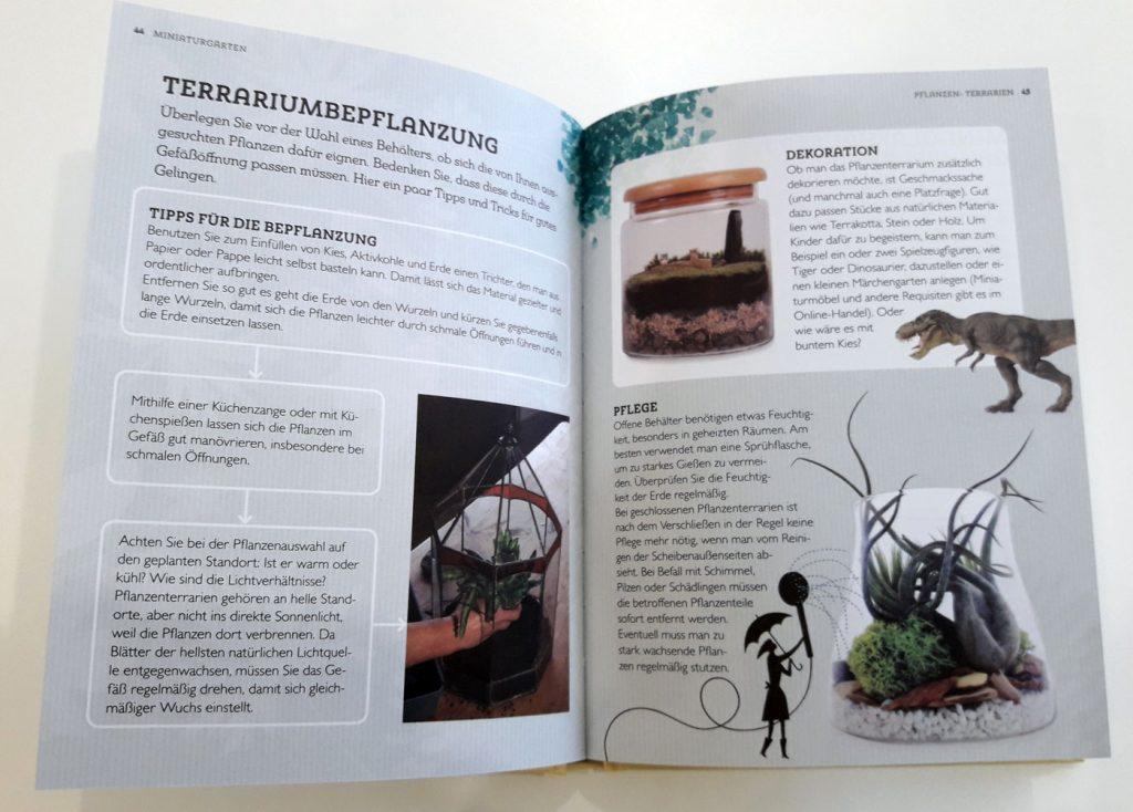 """Einblick in """"Miniaturgärten"""": Bei der Dekoration können Sie Ihrer Fantasie freien Lauf lassen. Foto: Kristin Steffan/ForestFinance"""