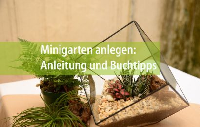 Minigarten anlegen: Anleitung und Buchtipps