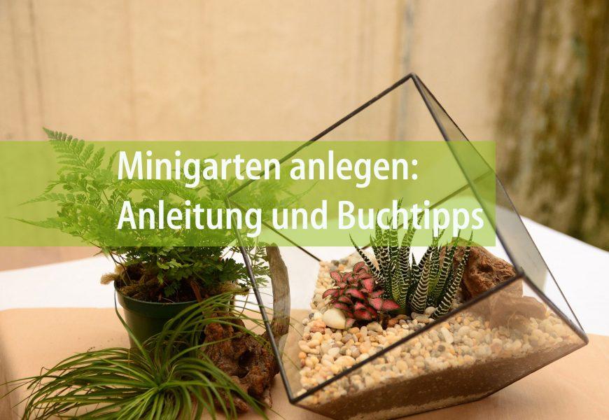 Minigarten Im Glas garten im glas | forestfinance-blog