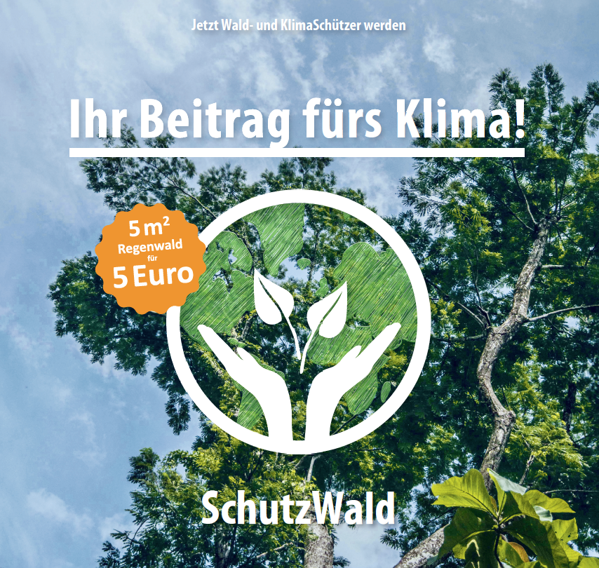 Waldschutz ist Klimaschutz
