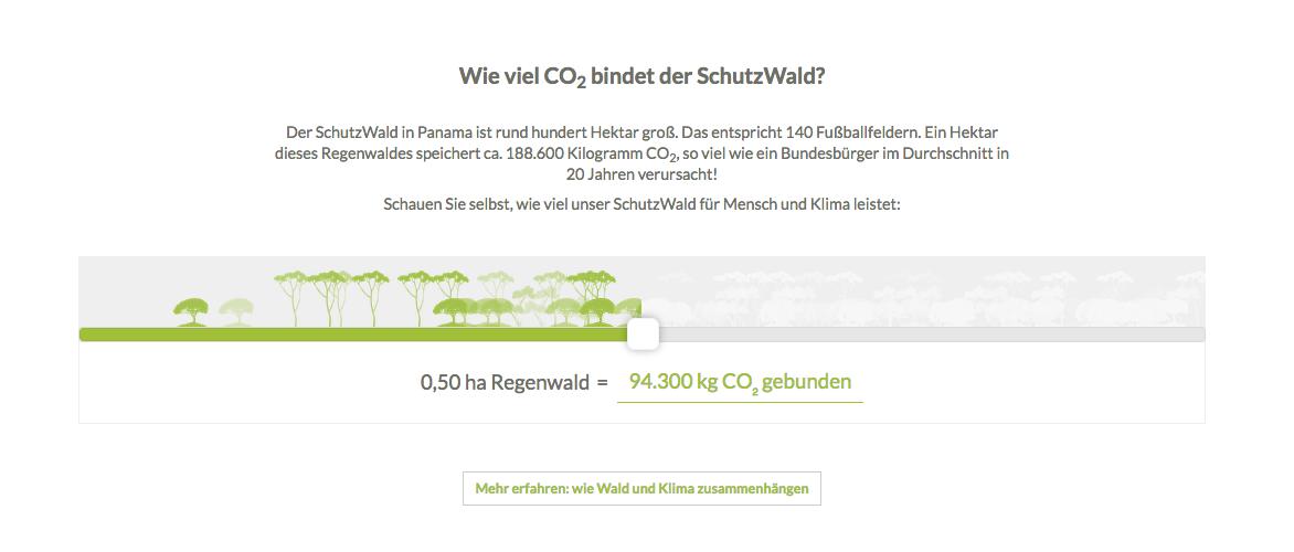 Auf unserer SchhutzWald-Seite können Sie online berechnen, wie viel klimaschädliches CO2 vom Regenwald gebunden wird.
