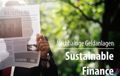 Sustainable Finance – nachhaltige Geldanlagen: Bedeutung und Standards in Europa