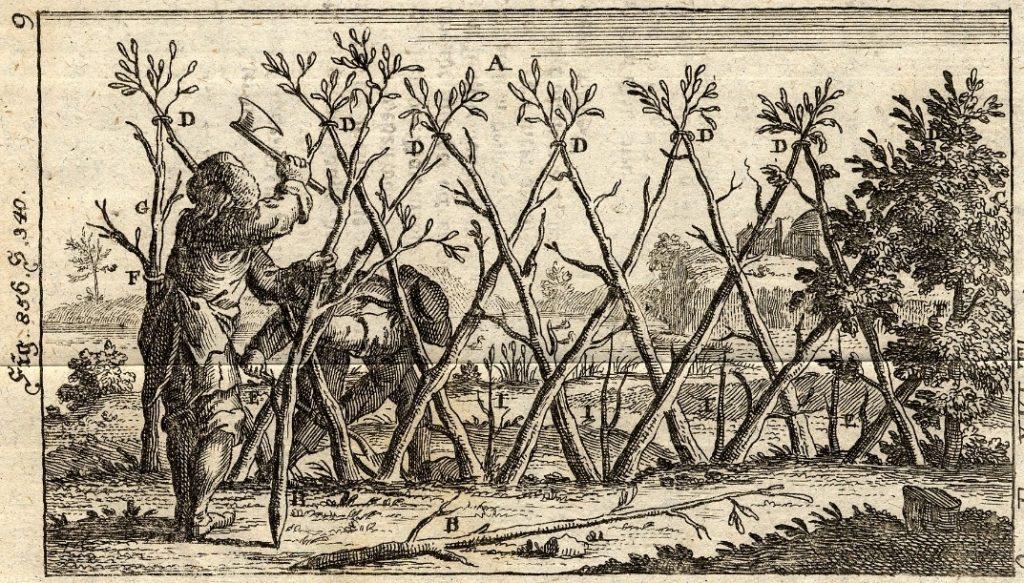 Umzäunung aus lebendem Gehölz nach Johann Georg Krünitz: Oeconomische Encyclopädie. Band 16, Berlin 1787 (Figur 856)