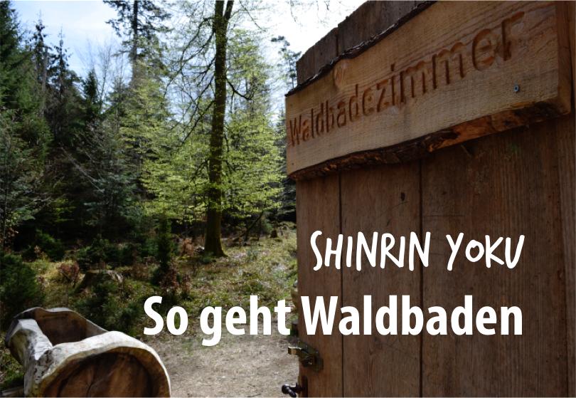 Shinrin Yoku – Waldbaden, der neue alte Trend