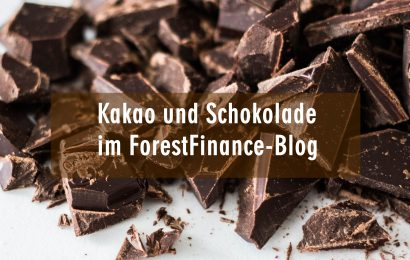 Blogschau Kakao & ausgezeichnete Schokolade
