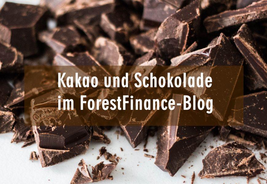 Dossier: Kakao
