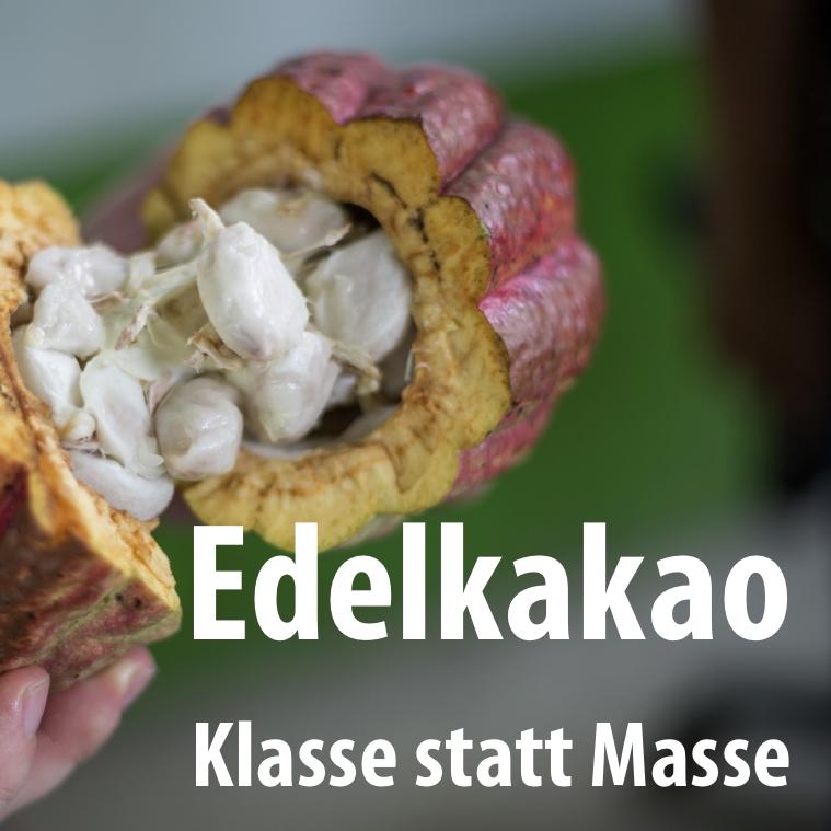 Edelkakao: Klasse statt Masse