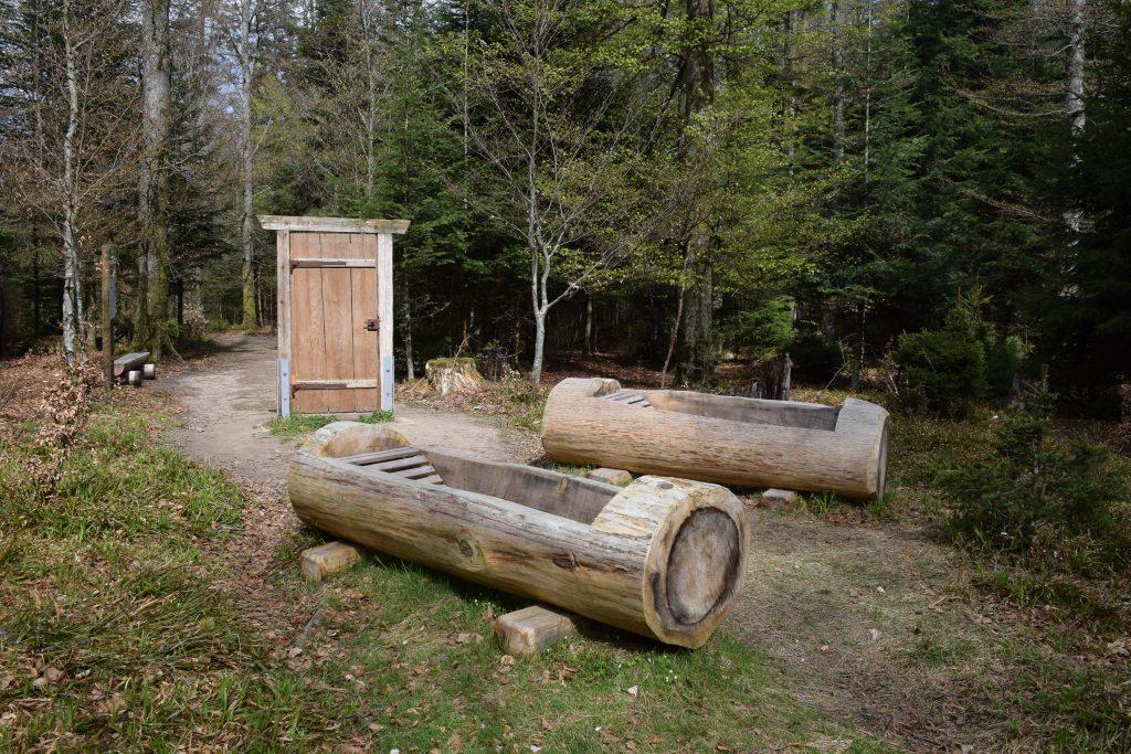 Deutschlands erstes Waldbadezimmer steht im Schwarzwald, auf dem Sommerberg, bei Bad Wildbad. Foto: Christine Sommer-Guist