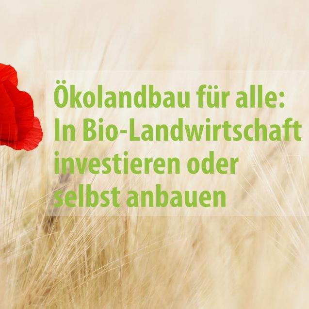 Waldinvestment oder Investment in Bio-Landwirtschaft?